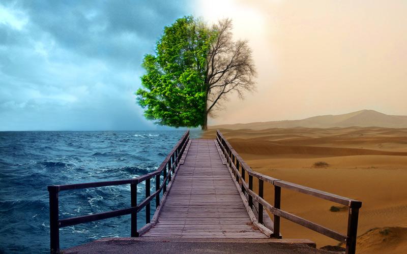 environment1